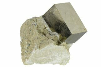 "Buy 1.26"" Pyrite Cube In Rock - Navajun, Spain - #118237"
