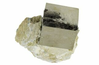 "1.01"" Pyrite Cube In Rock - Navajun, Spain For Sale, #118238"