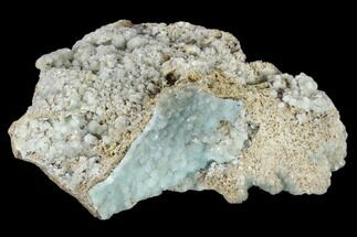 "Buy 3.6"" Powder Blue Hemimorphite - 79 Mine, Arizona - #118441"