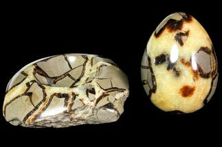 "3.9"" Polished Septarian Egg with Base - Madagascar For Sale, #118133"