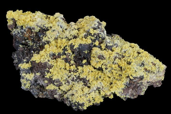 "4.7"" Mimetite Crystal Clusters on Limonitic Matrix - Mexico"