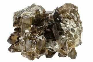 "4"" Dark Smoky Quartz Crystal Cluster - Brazil For Sale, #119570"