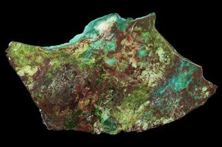 "Buy 6.4"" Chrysocolla & Malachite Slab From Arizona - Clear Coated - #119749"