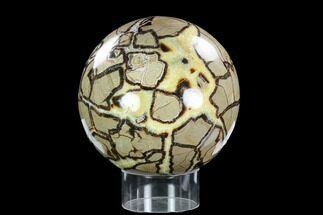 "Buy Huge, 8"" Polished Septarian Sphere (28 lbs) - Madagascar - #120751"