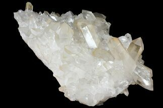 "Buy Large, 15.8"" Wide Quartz Crystal Cluster - Brazil - #121414"