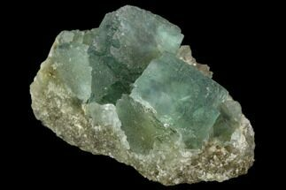 "Buy 1.5"" Green Fluorite Crystals on Quartz - China - #121999"