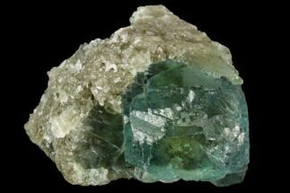 "Buy 1.3"" Green Fluorite Crystals on Quartz - China - #122005"