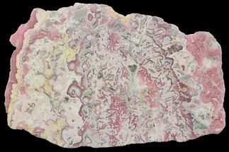 "Buy 4.9"" Polished Rhodochrosite Slab - Argentina - #122221"