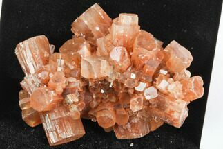 "2.3"" Aragonite Twinned Crystal Cluster - Morocco For Sale, #122171"