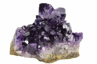 "Buy 3.5"" Dark Purple, Amethyst Crystal Cluster - Uruguay - #122107"