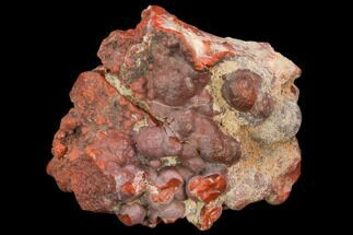 "1.5"" Botryoidal, Red Jasper Nodule - Utah For Sale, #122603"