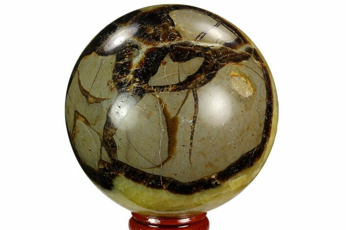 "3"" Polished Septarian Sphere - Madagascar"