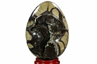 "7.0"" Septarian ""Dragon Egg"" Geode - Black Crystals For Sale, #122525"