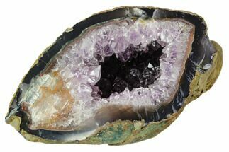 "Buy 5.0"" Wide, Purple Amethyst Geode - Uruguay - #123829"