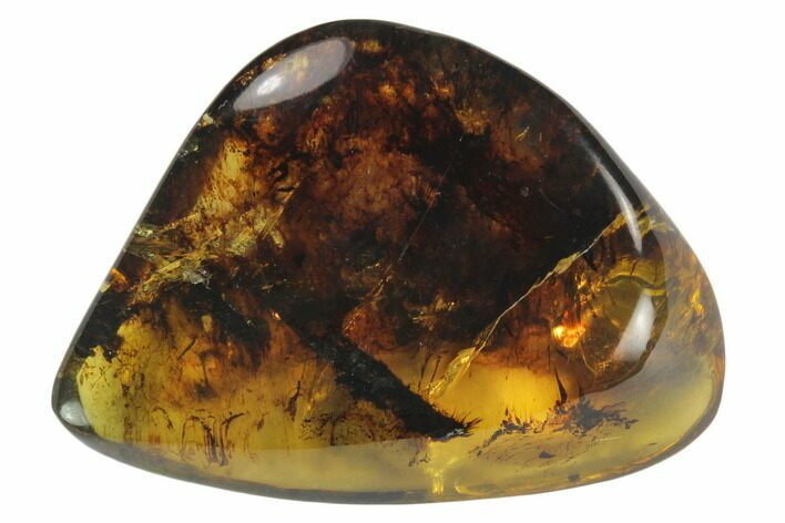 "1.3""  Polished Chiapas Amber (4 grams) - Mexico"