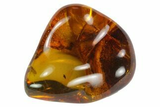 "Buy 1.3""  Polished Chiapas Amber (8 grams) - Mexico - #114838"