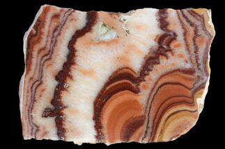 "Buy 1.6"" Polished Slab Of Rolling Hills Dolomite - Mexico - #126679"