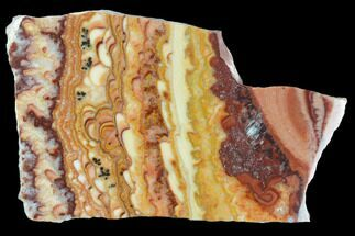 "Buy 2.35"" Polished Slab Of Rolling Hills Dolomite - Mexico - #126685"