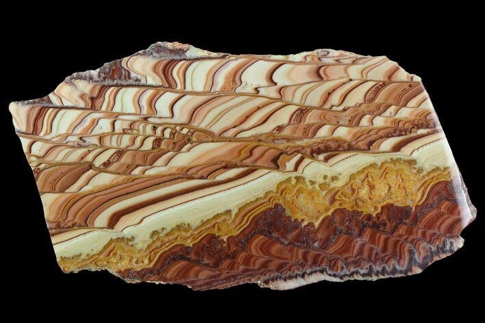 "7.5"" Polished Slab Of Rolling Hills Dolomite - Mexico"