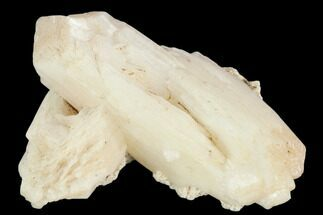 "Buy 2.5"" Stilbite Crystal Cluster - Linn County, Oregon - #126898"