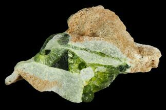 Wavellite - Fossils For Sale - #127137