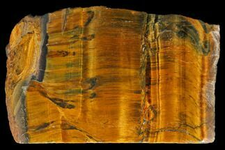 "3.4"" Polished Tiger's Eye Section - South Africa For Sale, #128447"