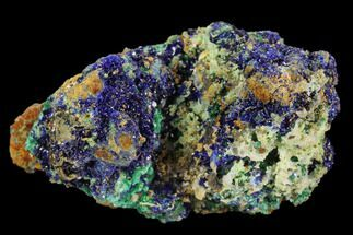 Azurite & Malachite - Fossils For Sale - #126993