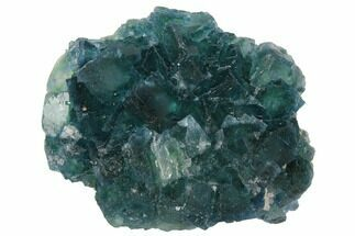 Fluorite - Fossils For Sale - #128799
