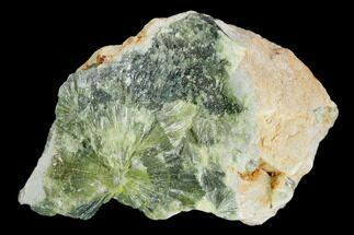 Wavellite - Fossils For Sale - #127128