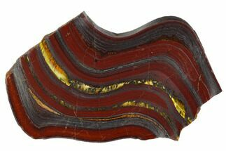 Tiger Iron Stromatolite - Fossils For Sale - #129210