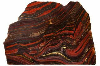 "9.1"" Polished Tiger Iron Stromatolite - 3.02 Billion Years For Sale, #129317"