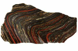 "10.2"" Polished Tiger Iron Stromatolite - 3.02 Billion Years For Sale, #129332"