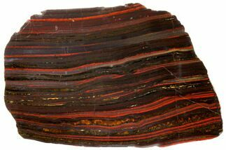 Tiger Iron Stromatolite - Fossils For Sale - #129435