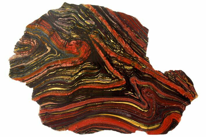 "11.9"" Polished Tiger Iron Stromatolite - 3.02 Billion Years"