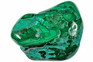 "3.3"" Polished Chrysocolla and Malachite - Congo For Sale, #129551"