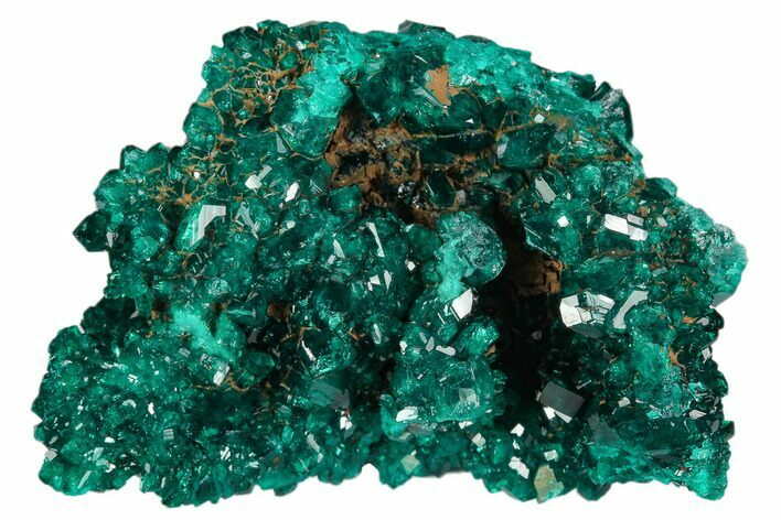"1.8"" Gorgeous, Gemmy Dioptase Crystal Cluster - Congo"