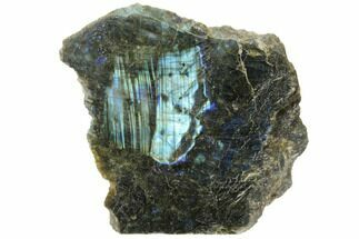 "Buy 5.5"" Wide, Single Side Polished Labradorite - Madagascar - #126457"