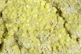 "3.5"" Sulfur Crystal Cluster on Matrix - Nevada - #129749-2"