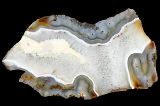 "8.7"" Polished, Banded Agate Slice - Madagascar For Sale, #129881"