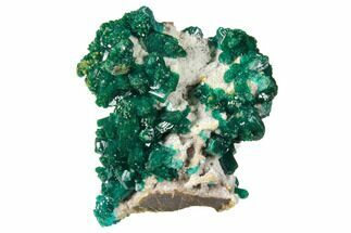 "1.6"" Gemmy Dioptase Cluster on Dolomite - Ntola Mine, Congo For Sale, #130493"