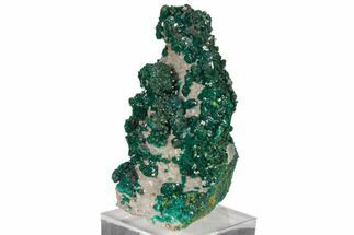 "3.6"" Gemmy Dioptase and Mimetite on Dolomite - Ntola Mine, Congo For Sale, #130502"