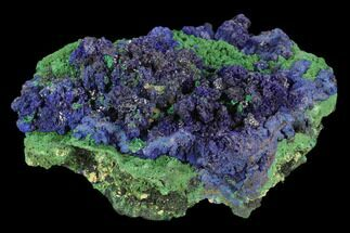 "4.4"" Vibrant Malachite and Azurite Association - Morocco For Sale, #130820"