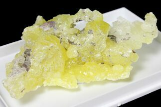 "Buy 2.7"" Lemon-Yellow Brucite - Balochistan, Pakistan - #131230"