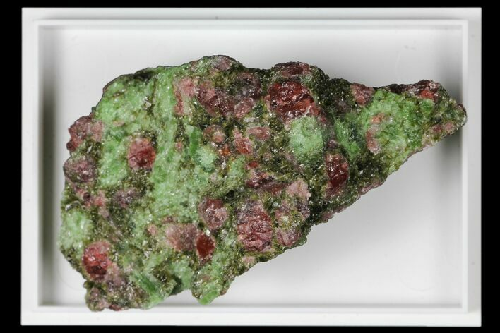 "2.1"" Pyrope, Forsterite, Diopside & Omphacite Association - Norway"