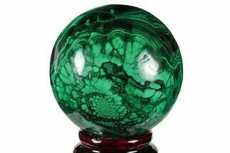 Malachite - Fossils For Sale - #131817