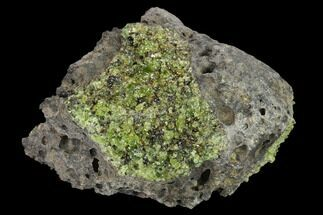 "Buy 3.9"" Peridot in Basalt - Arizona - #132292"