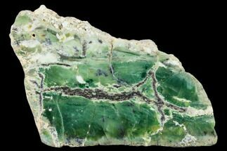 "Buy 5.3"" Polished Green-White Opal Slab - Western Australia - #132925"