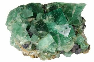 "1.9"" Fluorite Crystal Cluster with Galena-  Rogerley Mine For Sale, #132974"
