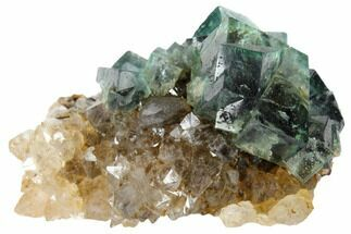 "Buy 2.1"" Rogerley Fluorite and Quartz Association - Rogerley Mine - #132982"