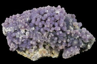 "Buy 6.6"" Sparkly, Botryoidal Grape Agate - Indonesia - #133006"